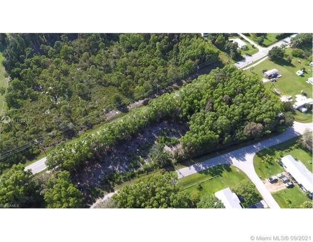 11100 Stringfellow, Cape Coral, FL 33023 (MLS #A11100130) :: The Paiz Group