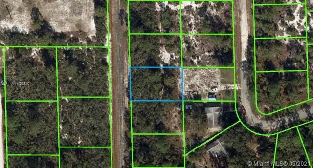 140 Eula Rd Nw, Lake Placid, FL 33852 (MLS #A11100840) :: The Paiz Group