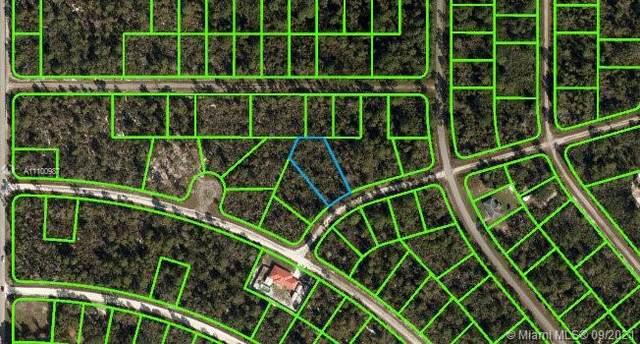 3207 N School Drive, Lake Placid, FL 33852 (MLS #A11100987) :: The Paiz Group