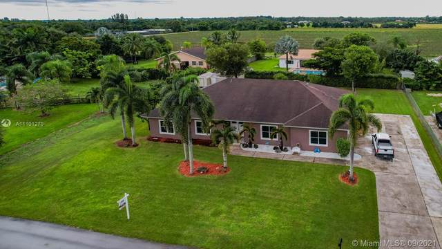 28915 SW 193rd Ct, Homestead, FL 33030 (MLS #A11101270) :: Onepath Realty - The Luis Andrew Group