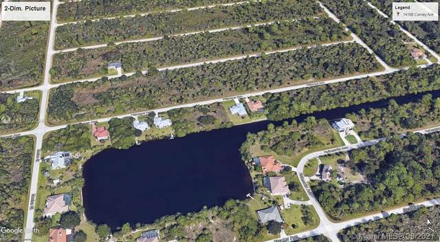 14156 Carney Avenue, Port Charlotte, Fl, Usa, Port Charlotte, FL 33953 (MLS #A11102424) :: Castelli Real Estate Services