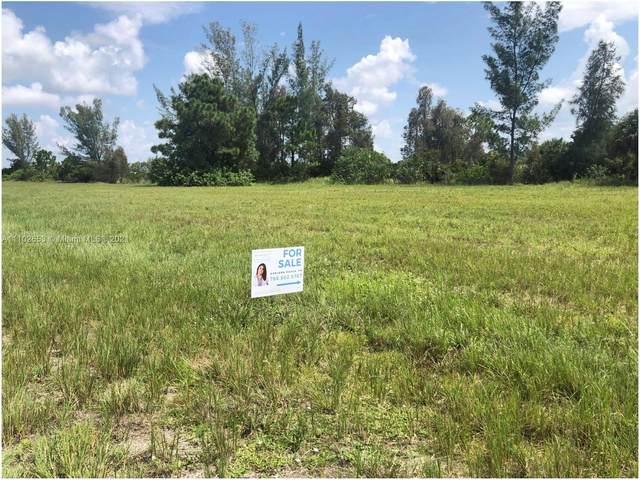 1015 NW 23, Cape Coral, FL 33993 (MLS #A11102653) :: Patty Accorto Team