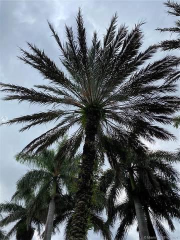 842 SW 151st Pl, Miami, FL 33194 (MLS #A11103174) :: Berkshire Hathaway HomeServices EWM Realty