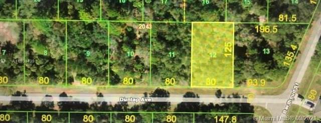14300 Dunlap Ave, Port Charlotte, FL 33953 (MLS #A11103439) :: Castelli Real Estate Services