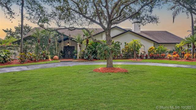 8440 SW 182nd Ter, Palmetto Bay, FL 33157 (MLS #A11106704) :: ONE   Sotheby's International Realty