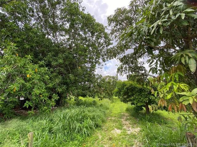 17810 SW 216th St, Miami, FL 33170 (MLS #A11107911) :: Green Realty Properties