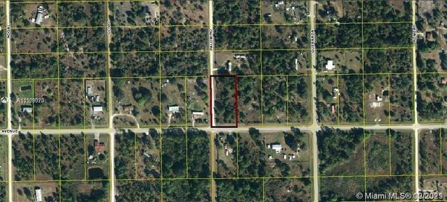 475 Hunting Club Ave, Clewiston, FL 33440 (MLS #A11108070) :: Green Realty Properties