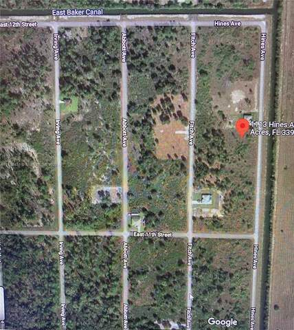 1113 Hines Ave, Lehigh Acres, FL 33972 (MLS #A11110431) :: Prestige Realty Group
