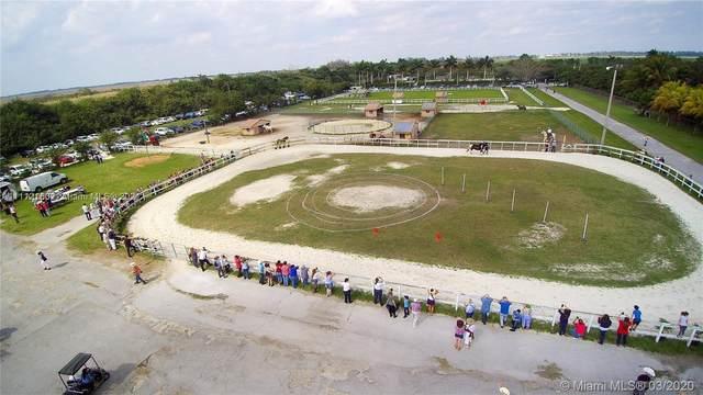 18690 SW 100th St, Miami, FL 33196 (MLS #A11112160) :: Jose Laya