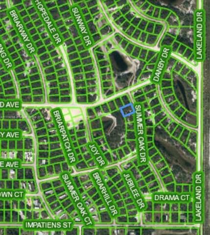 132 Summer Oak Ct, Lake Placid, FL 33852 (#A11114098) :: Dalton Wade