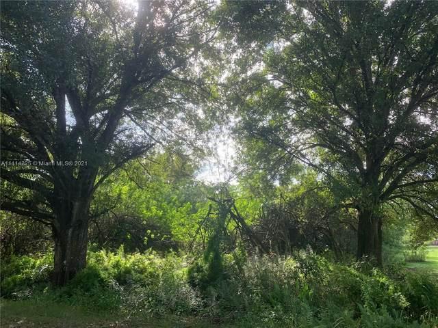 810 N Verda St, Clewiston, FL 33440 (MLS #A11114225) :: Green Realty Properties