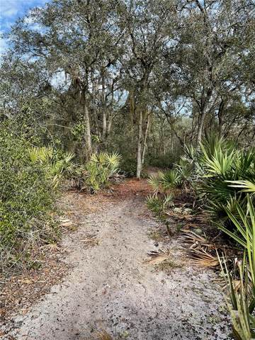 1638 R E Byrd Rd, Other City - In The State Of Florida, FL 33843 (MLS #A11114619) :: Patty Accorto Team
