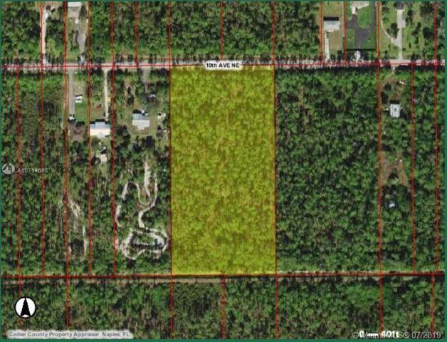 000 10th Ave Ne, Other City - In The State Of Florida, FL 34120 (MLS #A10714696) :: Grove Properties