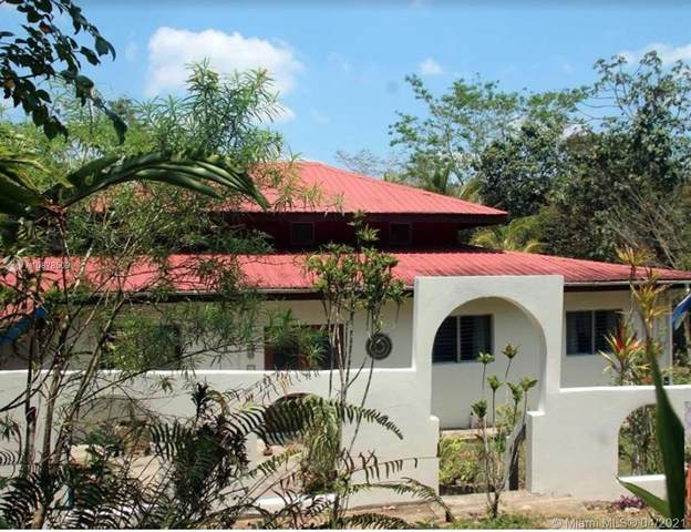 0 Cristo Rey Rd, San Ignacio, Cristo Rey Village Belize, 00 00000 (MLS #A10878509) :: The Riley Smith Group