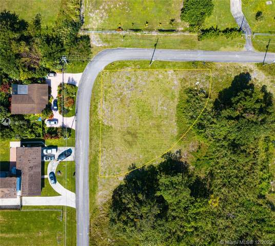 113XX S 218 ST, Miami, FL 33170 (MLS #A10959893) :: The Jack Coden Group