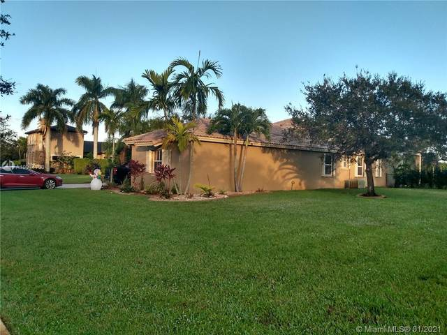 14101 SW 33rd Ct, Davie, FL 33330 (MLS #A10974738) :: THE BANNON GROUP at RE/MAX CONSULTANTS REALTY I