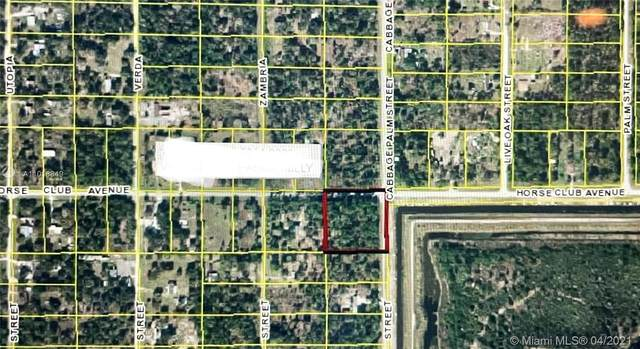 690 Horse Club Ave, Clewiston, FL 33440 (MLS #A11018849) :: The Riley Smith Group
