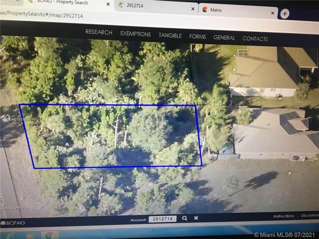 1817 Gould Ave Sw, Palm Bay, FL 32908 (MLS #A11056666) :: Douglas Elliman