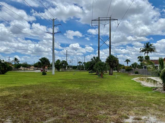 NW 169 ST, Hialeah, FL 33015 (MLS #A11089648) :: Onepath Realty - The Luis Andrew Group