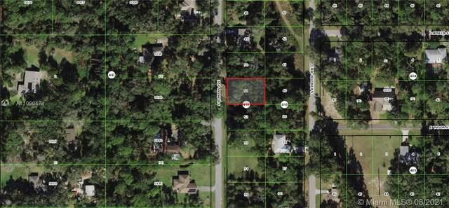 4979 S Romans Ave, Inverness, FL 34452 (MLS #A11090474) :: Castelli Real Estate Services