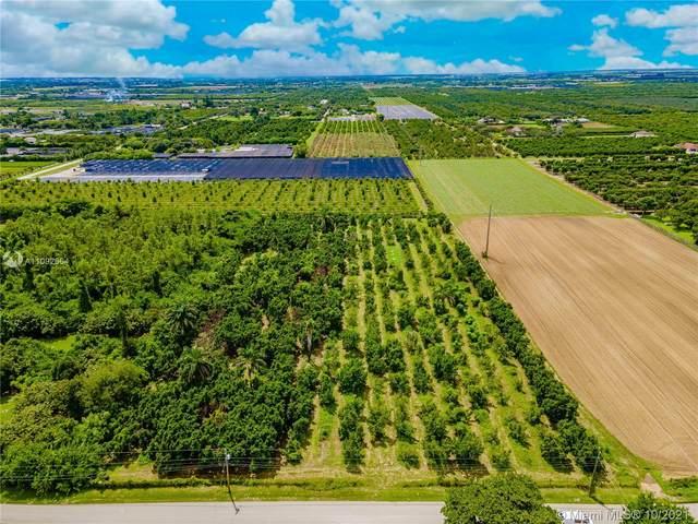 20290+ SW 256 Street, Homestead, FL 33031 (MLS #A11092664) :: Green Realty Properties