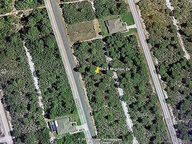 4624 Mignon Dr, Sebring, FL 33872 (#A11092950) :: Dalton Wade