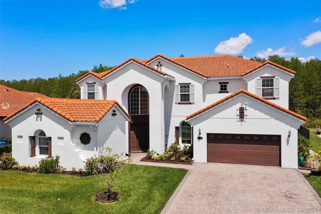 2881 Swoop, Kissimmee, FL 34741 (MLS #A11023721) :: The Jack Coden Group