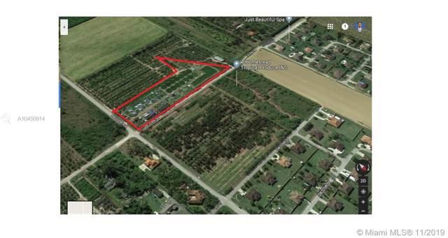 32800 SW 202nd Ave, Homestead, FL 33034 (MLS #A10450914) :: Grove Properties
