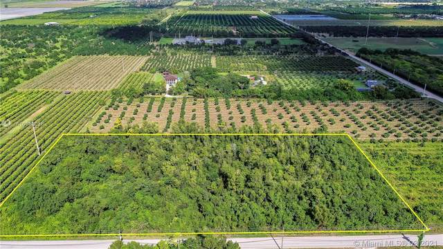 20299 SW 344 ST, Homestead, FL 33034 (MLS #A10960036) :: Compass FL LLC