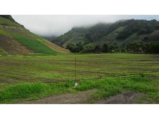 Cerro Punta, Panama, OT 00000 :: Berkshire Hathaway HomeServices EWM Realty