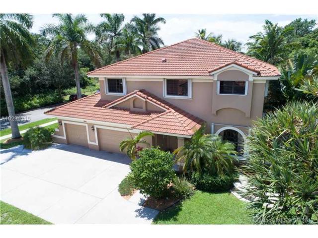 2991 Hidden Hollow Ln, Davie, FL 33328 (MLS #A10296315) :: Green Realty Properties