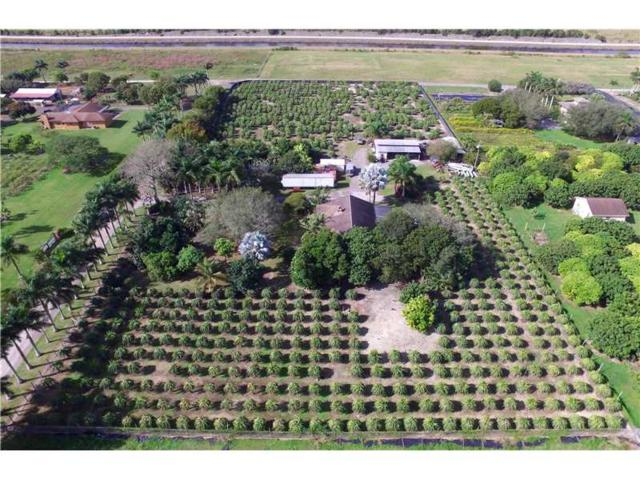 22595 SW 252nd St, Homestead, FL 33031 (MLS #A10141560) :: Green Realty Properties