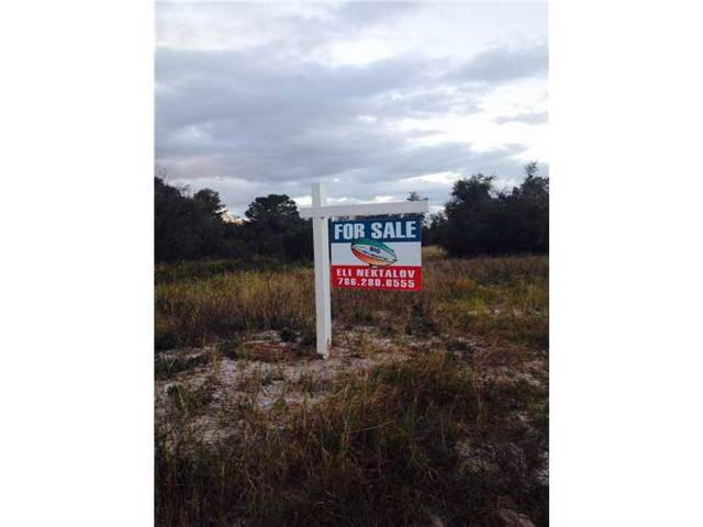 584 Morningside Dr, Lake Placid, FL 33852 (MLS #M1282186) :: Douglas Elliman