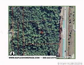 Immokalee 338200 IMMOKALEE RD. - Photo 1