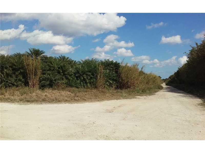 Homestead, FL 33030 :: Green Realty Properties