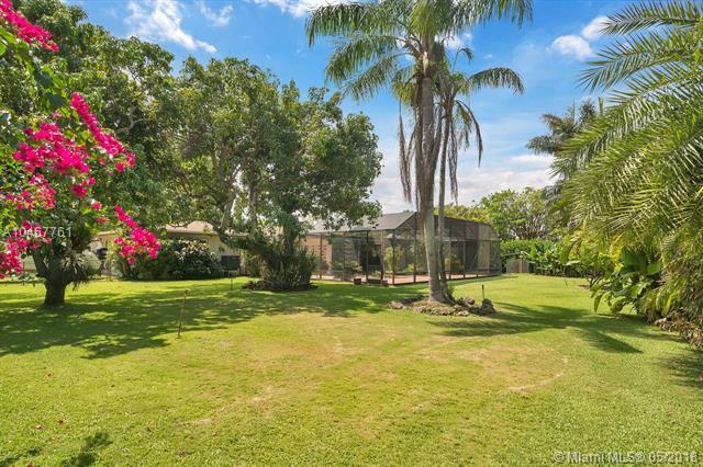 8377 SW 62nd Ave, South Miami, FL 33143 (MLS #A10467761) :: The Riley Smith Group