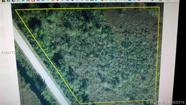 SW Sw Card Sound Rd, Homestead, FL 33035 (MLS #A10477555) :: Green Realty Properties