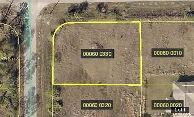 1051 Gunby Ave S, Other City - In The State Of Florida, FL 33974 (MLS #A10487705) :: Calibre International Realty