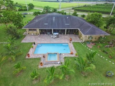 20710 SW 248th St, Homestead, FL 33031 (MLS #A10508471) :: Green Realty Properties