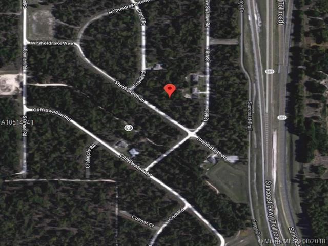16026 Sheldrake Loop, Other City - In The State Of Florida, FL 34614 (MLS #A10514541) :: Grove Properties