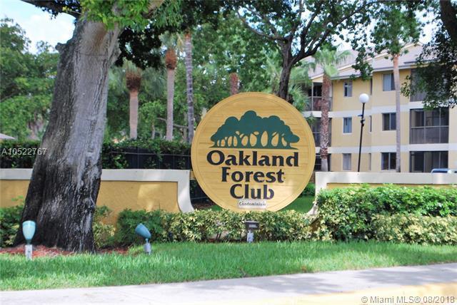 3013 N Oakland Forest Dr #302, Oakland Park, FL 33309 (MLS #A10522767) :: Laurie Finkelstein Reader Team