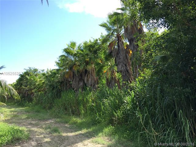 306XX SW 117 Ave, Homestead, FL 33033 (MLS #A10525525) :: Green Realty Properties
