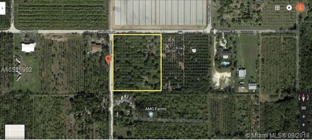 SW 398, Homestead, FL 33034 (MLS #A10535902) :: Green Realty Properties