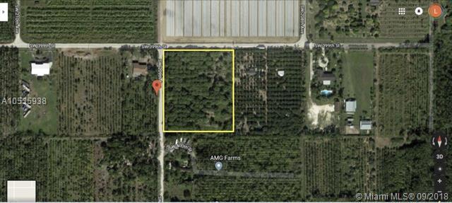 SW 398, Homestead, FL 33034 (MLS #A10535938) :: Green Realty Properties