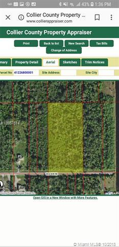 # ## 22 AVE SE, Other City - In The State Of Florida, FL 34117 (MLS #A10557514) :: The Paiz Group