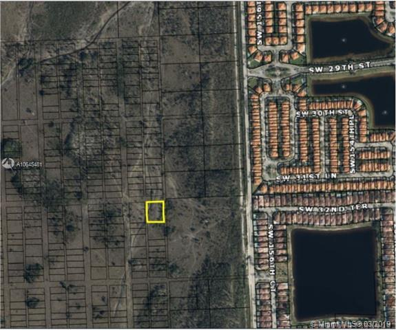 32XX SW 159 Xx, Miami, FL 33185 (MLS #A10645481) :: The Adrian Foley Group
