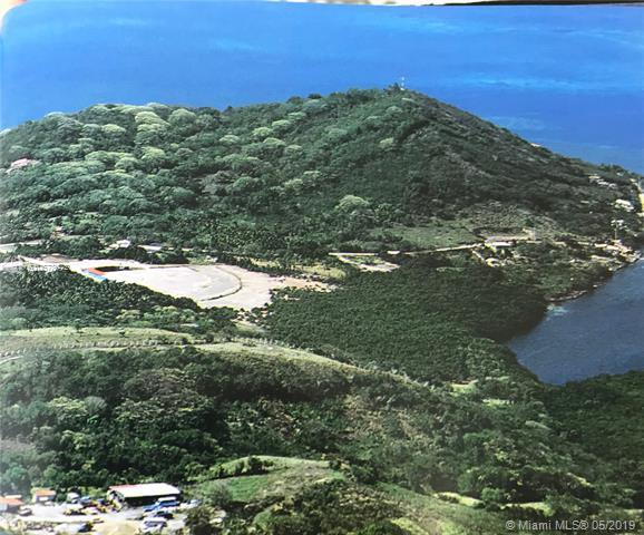 8.53 Acres/Land in I Of Providence Colombia, Other County - Not In Usa, CO  (MLS #A10678042) :: Green Realty Properties