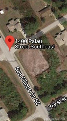 1400 Palau St Se, Palm Bay, FL 32909 (MLS #A10682561) :: The Paiz Group