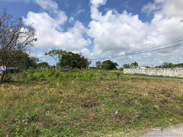 Dominican Republic Guiby 500 Metros, Other County - Not In Usa, FL  (MLS #A10695616) :: Laurie Finkelstein Reader Team