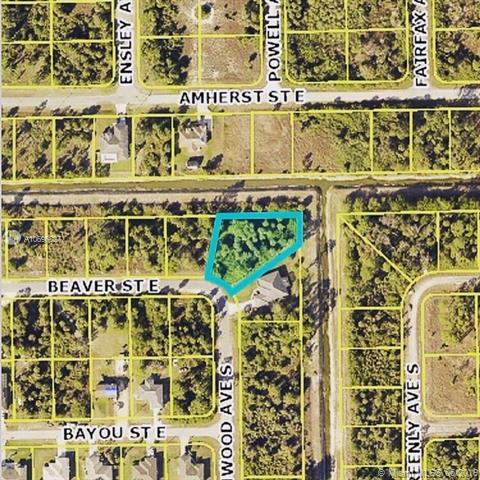 1225 E Beaver St, Other City - In The State Of Florida, FL 33974 (MLS #A10696027) :: Laurie Finkelstein Reader Team